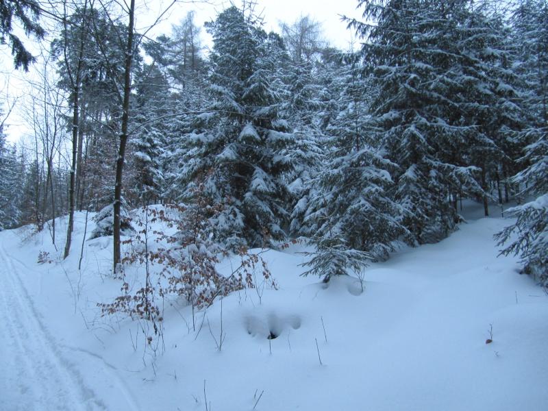http://www.karstenhaustein.com/Dateien/Pics/101226_jena4248.jpg